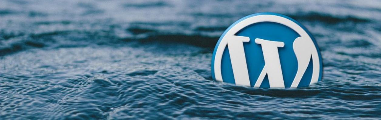 Почему стоит выбрать WordPress